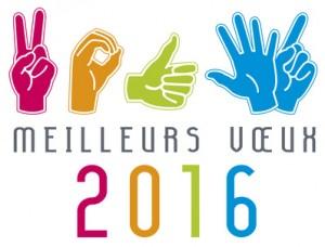 MEILLEURS VUX 2016 mains langage des sourd rebus 5