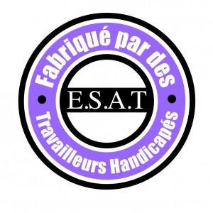 Tampon Fabrication ESAT